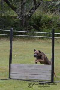 Pelle hoppar mot en 10:a!